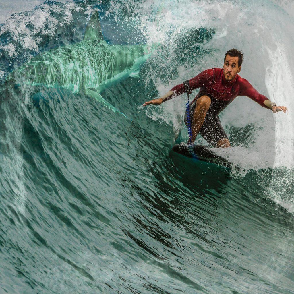 Cuadro con una foto surfeando